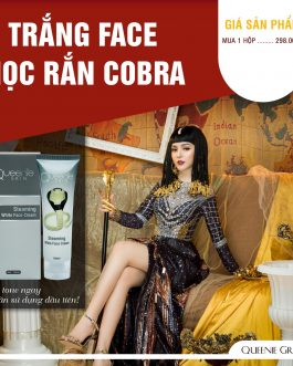 Ủ Trắng Face Nọc Rắn Cobra Queenie Skin